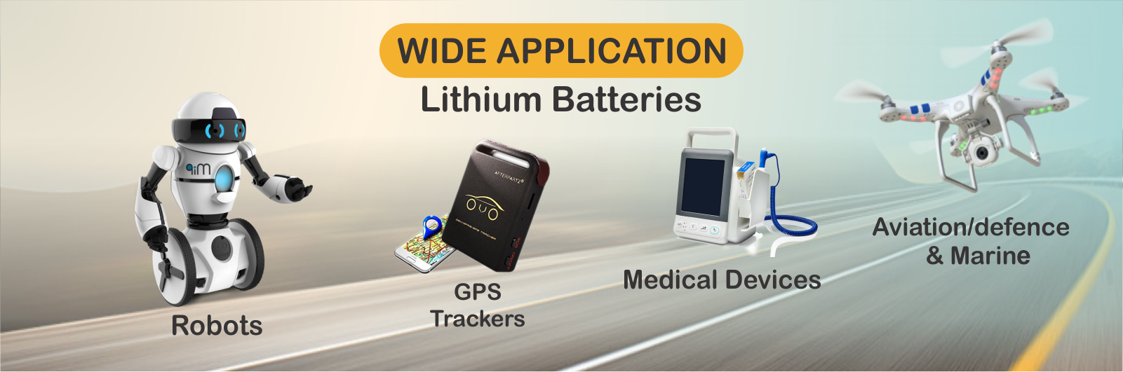 Lithium Ion Battery Manufacturers
